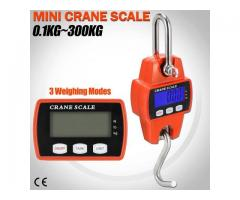 Mini Crane Weighing Scales in Uganda
