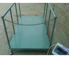 Cattle Farm Weight Scales in Uganda