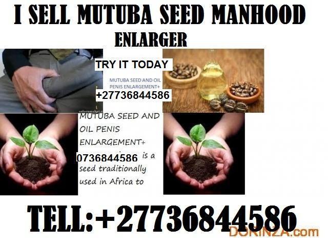 Mutuba seed and oil manhood enlarger +27736844586