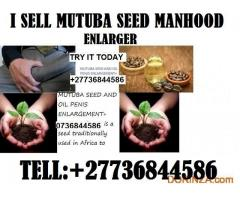 Mutuba seed and oil manhood enlarger +27736844586