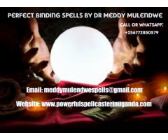 Most powerful witch Doctor in Baragoi+256772850579