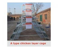 Chicken Cages,Rabbit Cages at wholesale