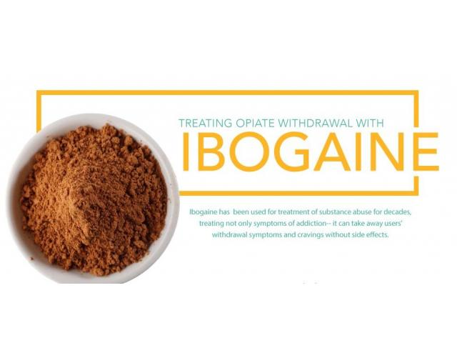 What Is the Success Rate for Ibogaine?