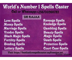 Spells Caster In Minneapolis Call +256700968783