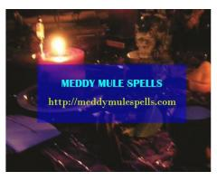 Uganda's Best Traditional Healer +256772850579
