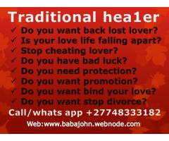 Bring back lost lover healer o748333182