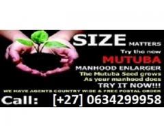 Kenya What's Mutuba seed? top men Enlargement