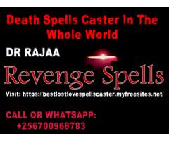 Quick Revenge spells in Uganda +256700968783