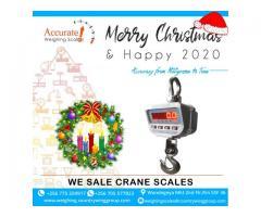 Certified Crane Hanging Scales in Uganda