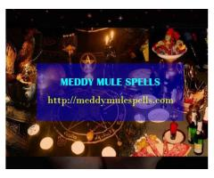 Real Spiritual Traditional Healer +256772850579