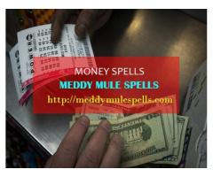 The Best Money Spells In USA +256772850579
