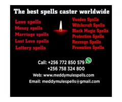 The Best Witch Doctor in Uganda +256772850579