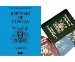 Quick passports and visa services