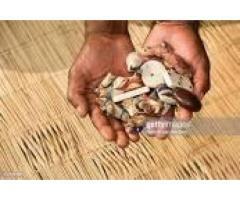 +27789223509 Spiritual healer s in Kenya /sudan