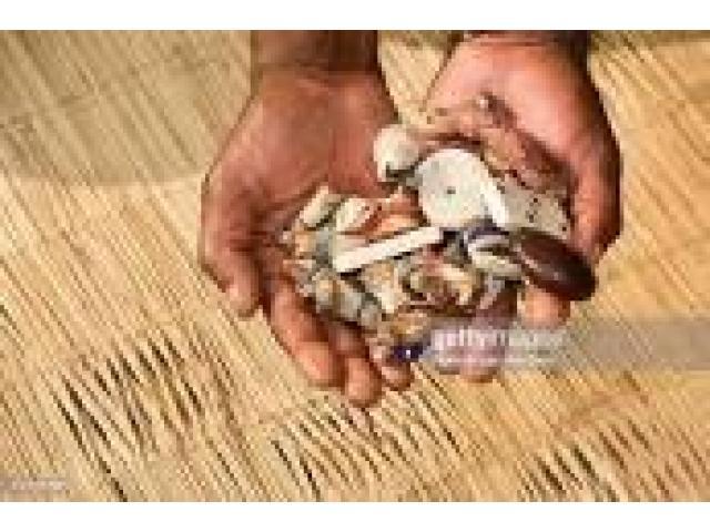 27789223509 Online spiritual healer in Keyna