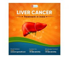 Get the Best Liver Transplant In India