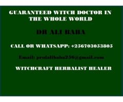 Leading Witch Doctor in Uganda +256703053805