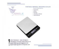electronic weighing portable weighing scale